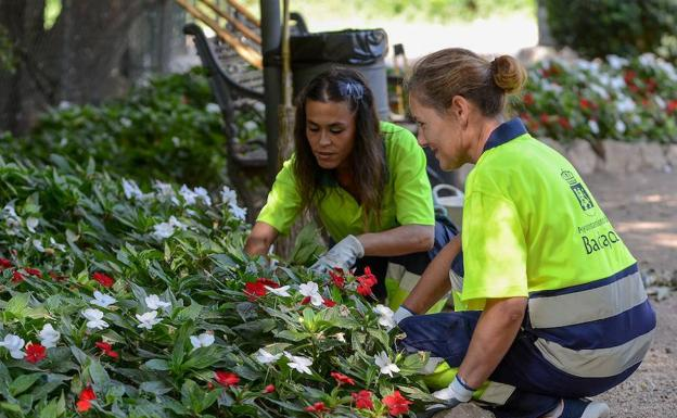 Los jardineros de badajoz piden m s personal para cumplir for Trabajo jardinero