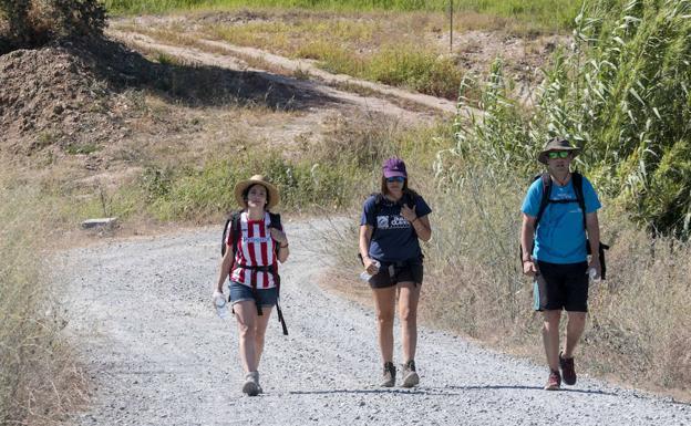 Peregrinos del Camino de Santiago a la altura de San Gil. :: /ANDY SOLÉ