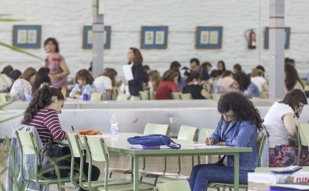 Educación convoca las oposiciones de maestro para el acceso a 710 plazas de las ocho especialidades