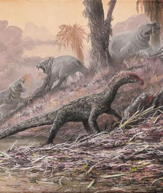 Los Primeros Parientes De Los Dinosaurios Eran Cuadrupedos Hoy Dinosaurs were reptiles and most hatched from eggs. los dinosaurios eran